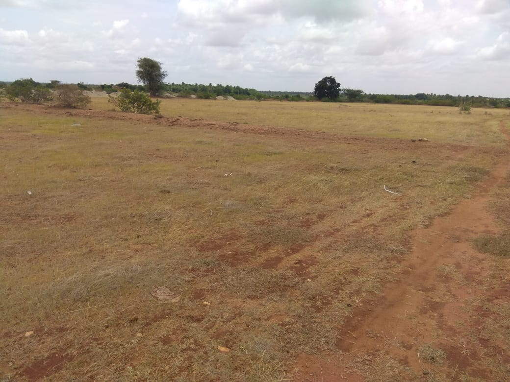 Agriculture Land For Sale in Hiriyur, Karnataka