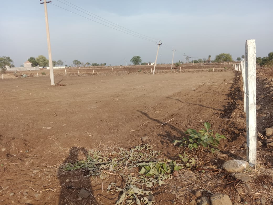 Agriculture Land For Sale in Antharam, Telangana | SFarmsIndia com